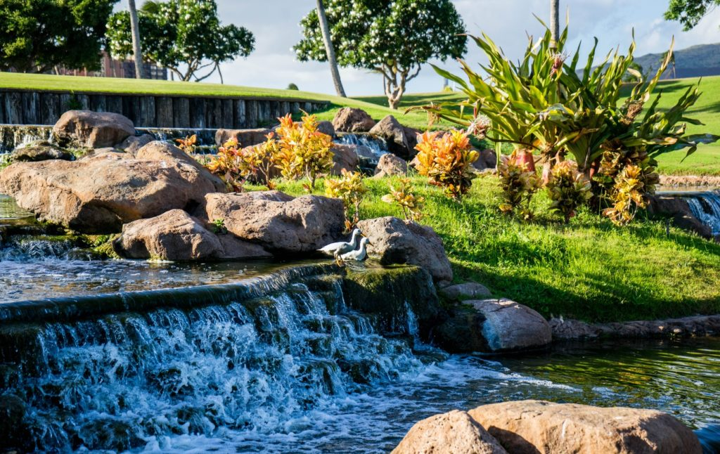 landscape-water-nature-outdoor-rock-waterfall-843761-pxhere.com