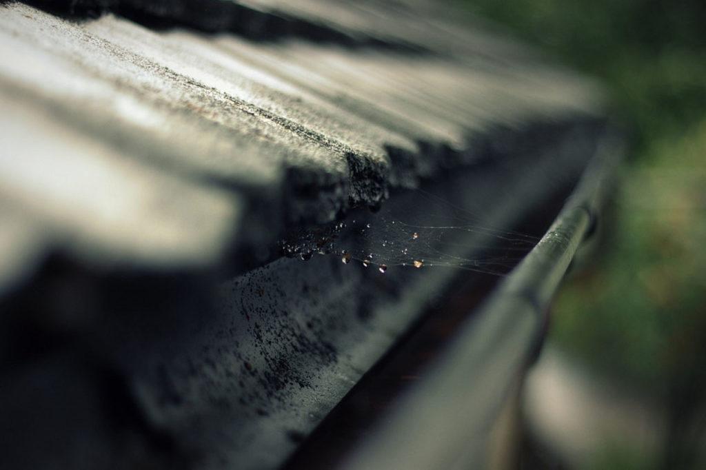 rain-gutter-473845_1280 copy